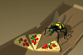 italian-bee